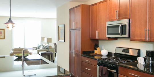 Large kitchen apartments for rent in Federal Hill