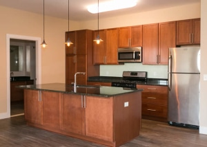 Beautiful kitchen apartments for rent in Federal Hill